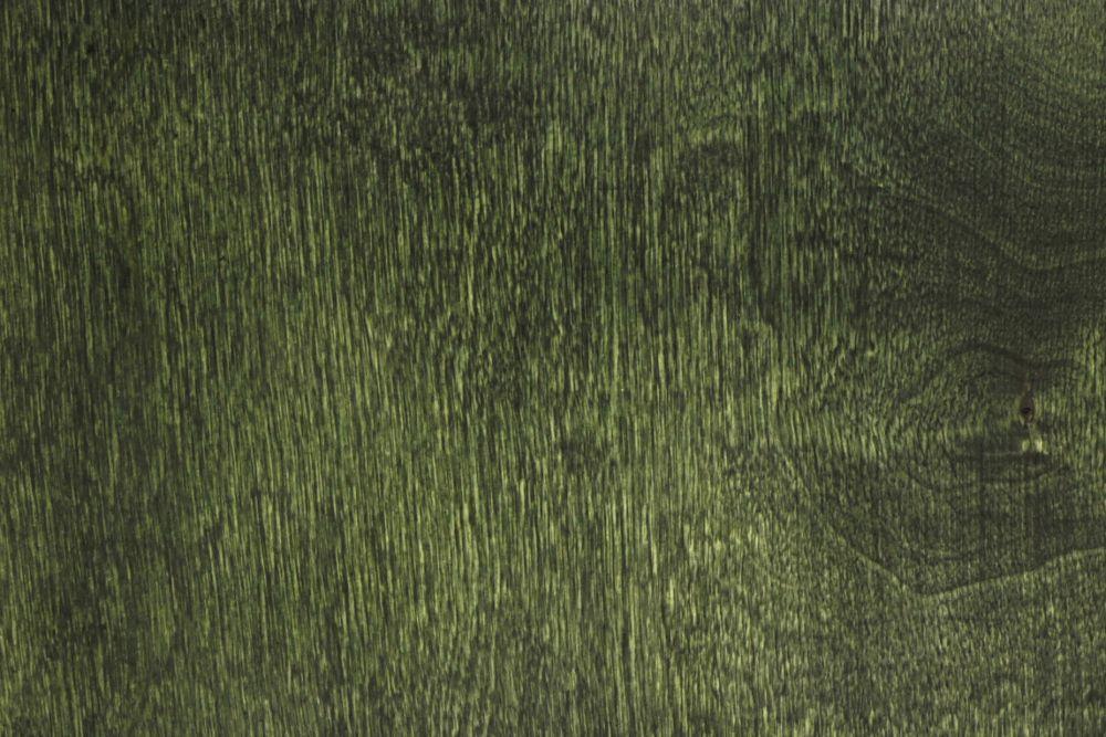 Karty menu zieleń